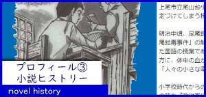11_novelhistory
